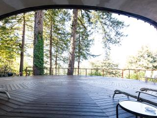 Romantic Luxury Home on Acre of Redwoods w/Hot Spa - Scotts Valley vacation rentals