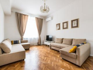 Nice one bedroom apartment steps from Kremlin - Moscow vacation rentals