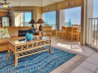 Cozy 1 bedroom Condo in Belleair Beach - Belleair Beach vacation rentals