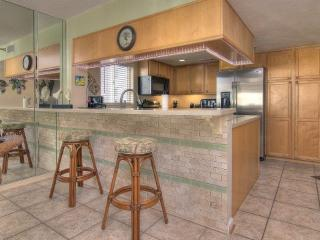 Arie Dam 204 - Madeira Beach vacation rentals