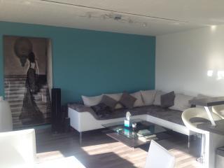 Bel appartement, avec vue superbe - Chambéry vacation rentals