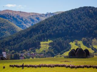 Pension Lungu Rasinari- Transylvania - Rasinari vacation rentals