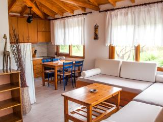 Charming Beachfront Bungalow - Ormos Panagias vacation rentals