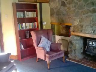 Cosy one bedroom rural apartment - Farranfore vacation rentals