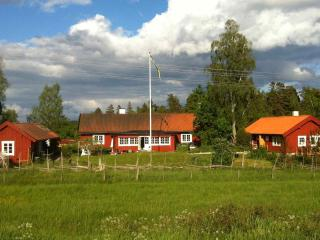 Cottage and B&B, countryside near StockholmSkavsta - Tystberga vacation rentals