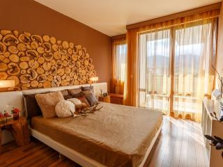 Stunning Vew 300 m from ski - Bansko vacation rentals