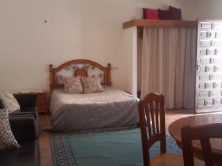 Studio apartment. Breakfast available - La Tercia vacation rentals