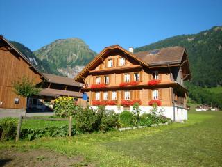 Helle Dachwohnung auf Bauernhof - Sarnen vacation rentals
