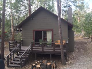 Cozy cabin in the woods - Close to the arts/music - Idyllwild vacation rentals