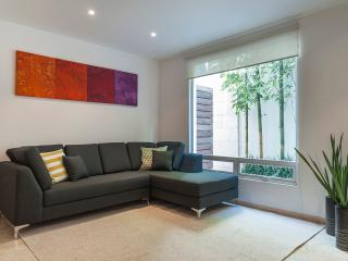MODERN 1BED/1BATH APART ON CALLE CONDESA - Mexico City vacation rentals