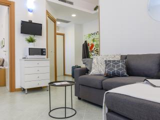 Cozy Condo with Washing Machine and Television - Milan vacation rentals