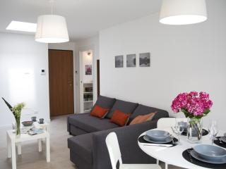 Comfortable Apartment with Television and Microwave - Milan vacation rentals