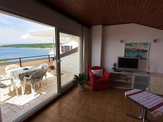 Beautiful Condo with Internet Access and A/C - Njivice vacation rentals