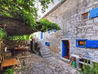450 year-old house with vine-covered terrace - Stari Grad vacation rentals