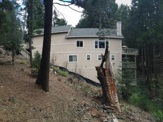 Perfect House with Internet Access and Parking Space - Twin Peaks vacation rentals