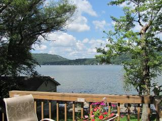 Beautiful lake front house living with great views - Branchville vacation rentals
