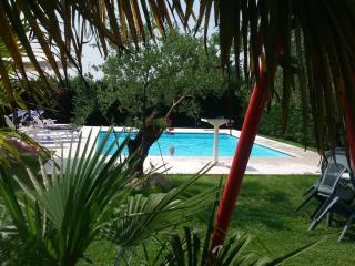 1 bedroom Apartment with Internet Access in San Giorgio in Salici - San Giorgio in Salici vacation rentals