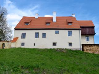 Historical Villa with a big Garden, BBQ, Relax - Plana u Marianskych Lazni vacation rentals