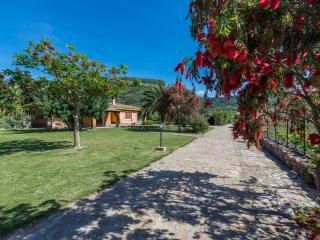 The charming country cottage - Bosa vacation rentals