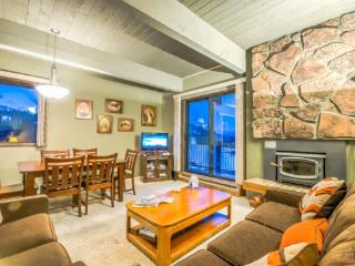 Storm Meadows C219 - Steamboat Springs vacation rentals