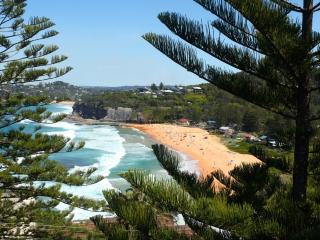 Perfect Bilgola Studio rental with Television - Bilgola vacation rentals