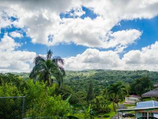 Casa Mendez -Cozy Mountain Paradise w/Wi-Fi - Utuado vacation rentals