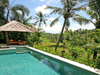 Villa Abadi in the heart of Bali's rice terraces - Canggu vacation rentals