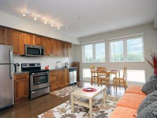 Bright New Apartment with Mountain Views - Squamish vacation rentals