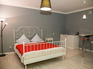 Nice 1 bedroom House in Krasnoyarsk - Krasnoyarsk vacation rentals