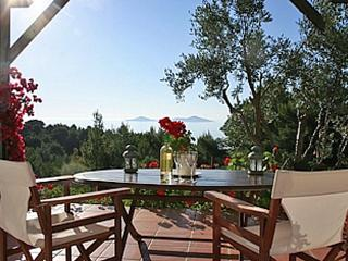 Alonissos Studio Appartment at Carob Tree House - Patitiri vacation rentals
