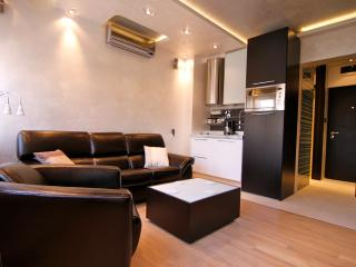 Lux Apartment Belgrade - Belgrade vacation rentals