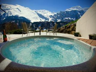 ALPHAVEN  Apartment A Panoramic Views Hot Tub Fire - Engelberg vacation rentals