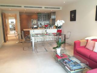 Modern 2bed flat next to Chelsea Bridge/Battersea - London vacation rentals