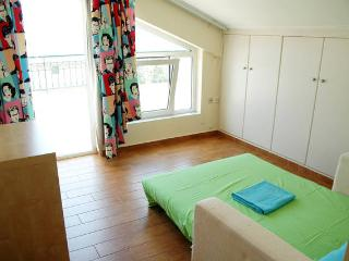 Cosy en-suite penthouse room with fantastic view! - Glyfada vacation rentals
