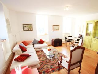 ALSACE LORRAINE Citycenter - Toulouse vacation rentals