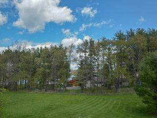 Large Lawn, Pool Table & Nearby Lake Access - Swanton vacation rentals