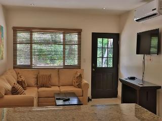 Luxury at its finest! Condo just 10 minutes from the 10 best beaches in town! - Playa Grande vacation rentals