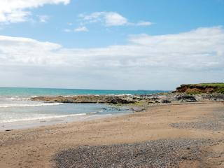 Cozy 2 bedroom  Apartment right by the Sea! - Carrick on Bannow vacation rentals