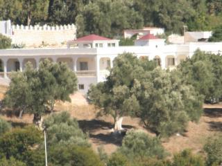 Domaine des Sloughis  Maison d'Hôtes - Moulay Idriss vacation rentals