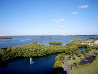 Only $695 a Week May Thru October - Fort Myers Beach vacation rentals