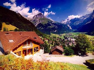 ALPHAVEN Apartment B Stunning Views Finnish Sauna - Engelberg vacation rentals