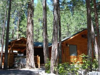 Beautiful House with Internet Access and Dishwasher - Yosemite National Park vacation rentals