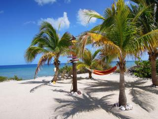 Island Time on the Brac - Peaceful and Quiet - Cayman Brac vacation rentals
