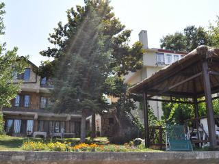 Villa at the shore of Lake Iznik (Nicaea) - Orhangazi vacation rentals