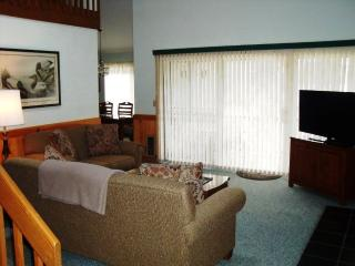 3 bedroom Condo with Internet Access in Lake Placid - Lake Placid vacation rentals