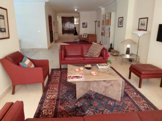 Luxury Design 3 Bedroom Flat - Cairo vacation rentals