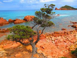SARDINIAN holidays | TERRA | CaSarda_ch***** - Capo Comino vacation rentals