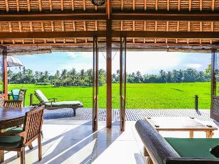 Million $ Ricefield Views 2BDR Villa Sungai in Ubud w Infinity Pool - Lodtunduh vacation rentals