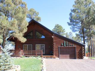 Oakwood offers the best of mountain living in this vacation cabin, centrally - Pagosa Springs vacation rentals