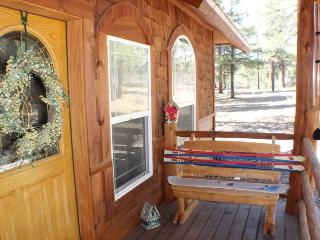 Beautiful vacation home in Pagosa Springs backing up to the National Forest and Martinez Canyon. - Pagosa Springs vacation rentals